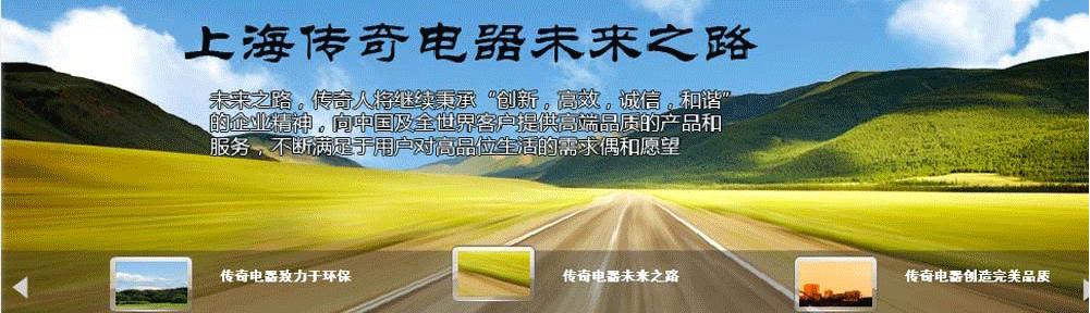 上海传奇商务有限公司